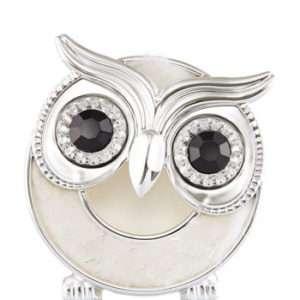 -WISE OWL VISOR CLIP