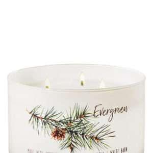 ;Evergreen