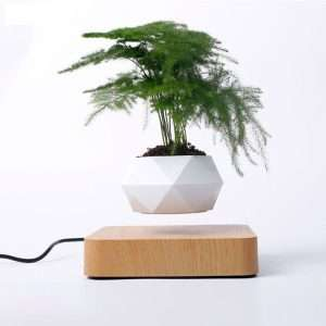 Air Bonsai – Svífandi Blómapottur